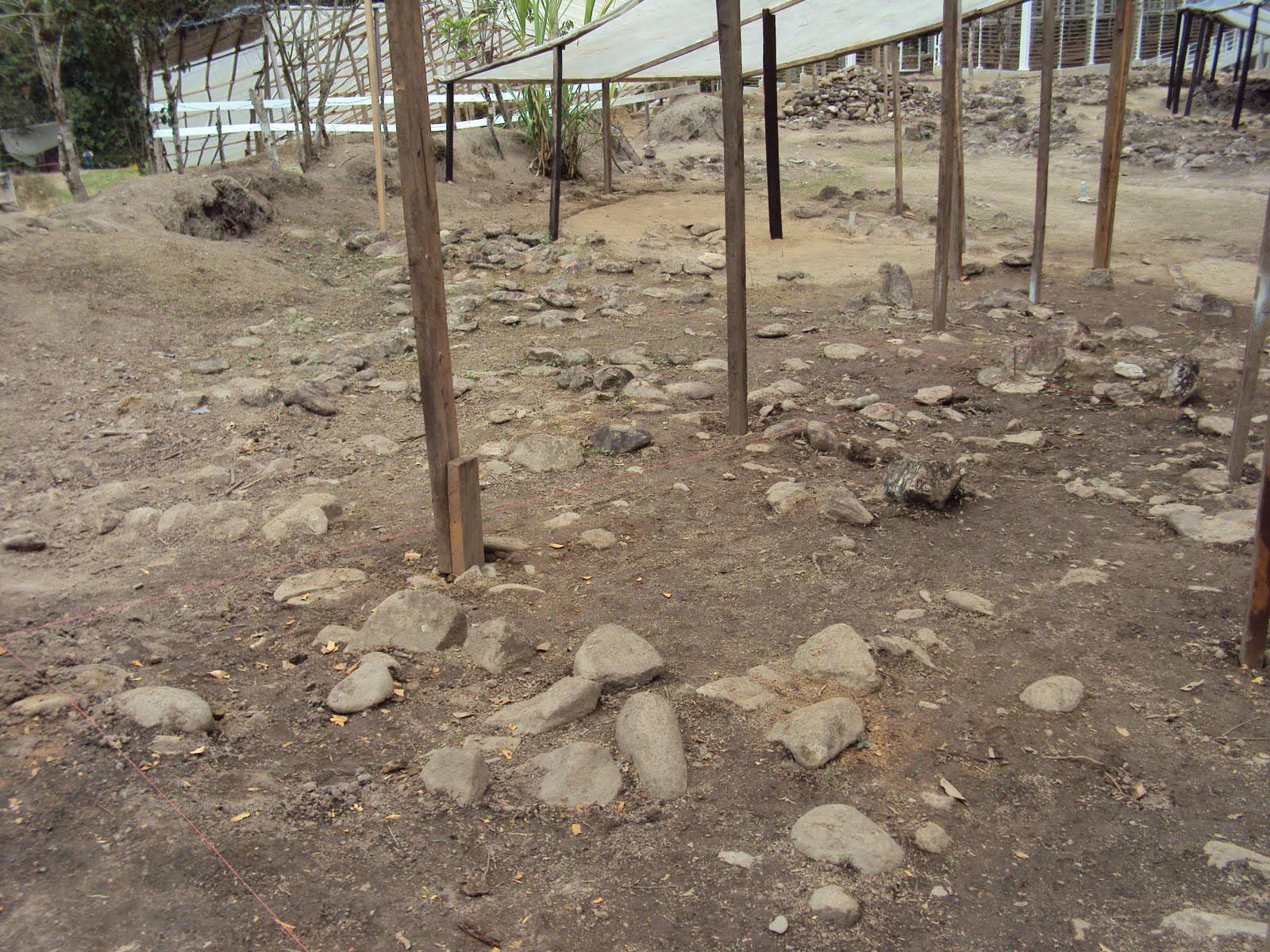 Vista del sector noreste del área de estudio antes de la excavación